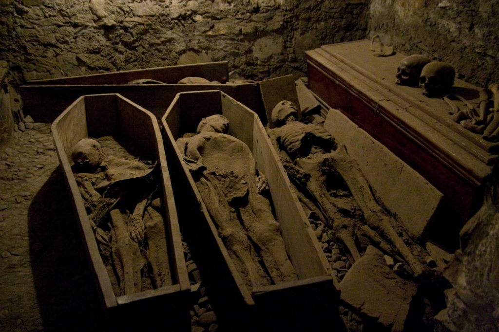 800-year-old Mummy Stolen in Ireland