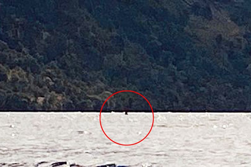 Man Claims to Have Spotted China's Loch Ness Monster