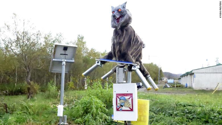 Monster Wolf ROBOTS are Warding Off Wild BEARS in Japan